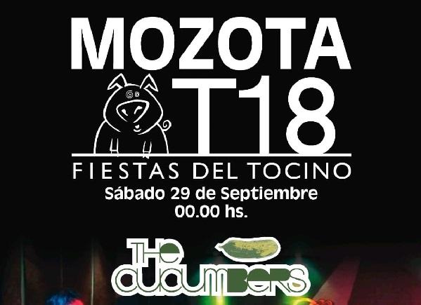 18ª «Fiestas del Tocino» en Mozota!